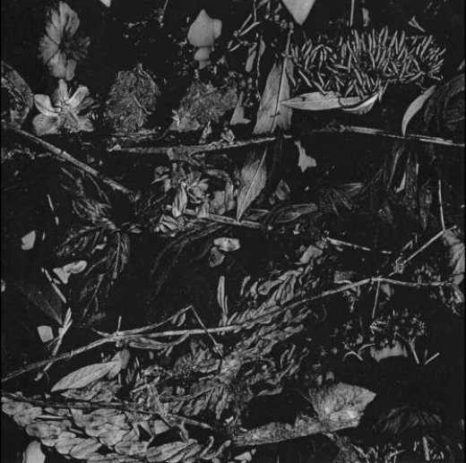 Turia - Dede Kondre (LP)