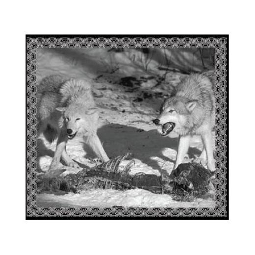 Hadak urA / Sacred Dominions - SplitCD