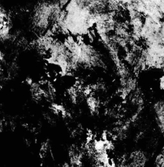 Warwulf - In the Glare of a Dying Horizon