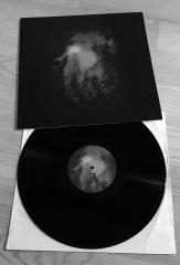 Ostots - Ezer ezaren araztasuna (LP)