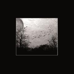 Deathgate Arkanum - Seelen (LP)