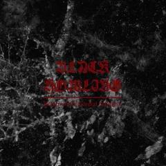 Black Howling - Return of Primordial Stillness (LP)