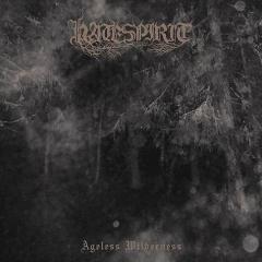 Hatespirit - Ageless Wilderness (LP)