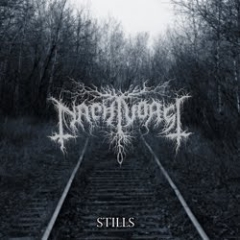 Nachtvorst - Stills (LP)