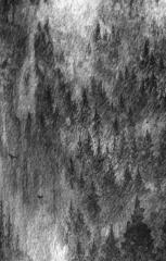Voqkrre - Wariwulf (CS)