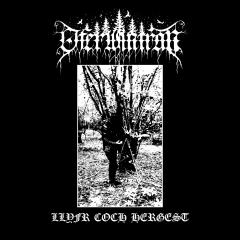 Oferwintran - Llyfr Coch Hergest (LP)