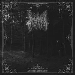 Í Myrkri - Drivende i Dødens Æter (CD)