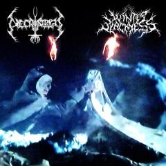 Necrostrigis / Winter Blackness - W mrokach roziskrzonych mrozem (EP)