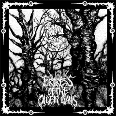 Fortress of the Olden Days / Harm Wulf - SplitEP