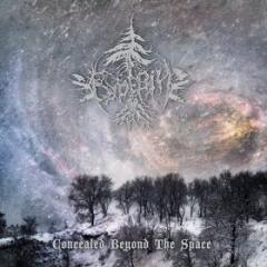 Bureviy - Concealed beyond the Space (CD)