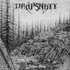 Dråpsnatt - I denna skog (CD)