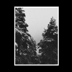 Odious Devotion - Ilmestys (CD)