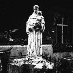 Wampyric Rites / Satanic Count / Winterstorm / Demonic War - Night of Consecration (CD)